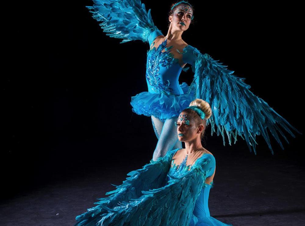 Feather Ballerinas